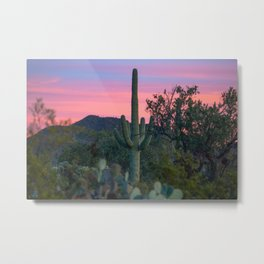 Succulent Sunset - Saguaro Cactus at Dusk in Sonoran Desert in Arizona Metal Print