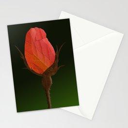 Autumn Rosebuds Stationery Cards