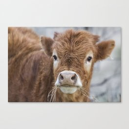 It's Hard to Smile When Your Mouth Is Full Canvas Print