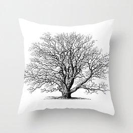 oak tree botanical no2 Throw Pillow