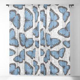 Blue morpho butterflies Sheer Curtain