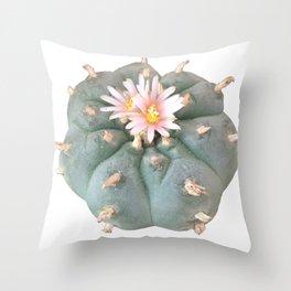 """Peyote """"Lophophora Williamsii"""" Throw Pillow"""