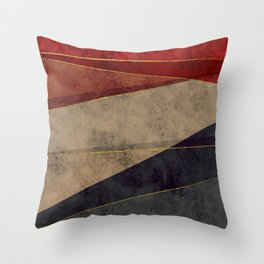 Contemporia 4 Throw Pillow
