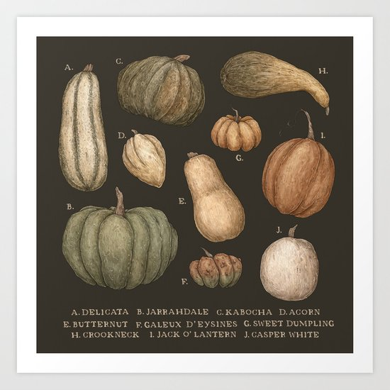 Pumpkins and Gourds by jessicaroux