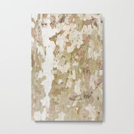 Plane tree camouflage looks bark pattern Metal Print