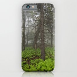 Great Smoky Mountains National Park - Forest Fern Adventure iPhone Case