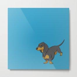 Black & Tan Smooth Dachshund on Blue Metal Print
