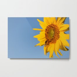 Flower Photography by Agata Kaczówka Metal Print
