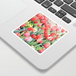 Skagit Valley Tulips Sticker