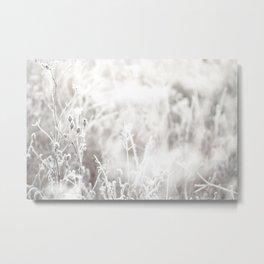 Frozen Wild Flowers Metal Print