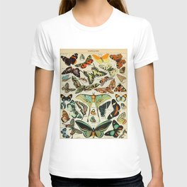Butterfly Vintage Scientific Illustration French Language Encyclopedia Lithographs Educational Diagr T-shirt