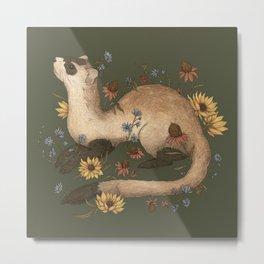 Black-footed Ferret Metal Print