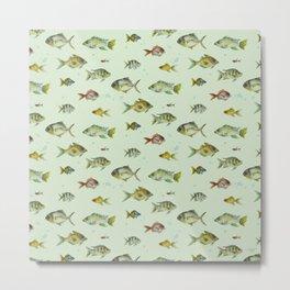 Colourful Fishies Metal Print