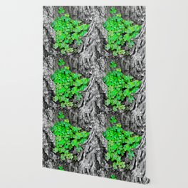 Clover Cluster Wallpaper
