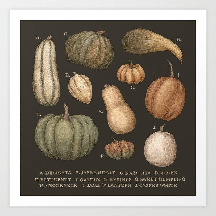 Pumpkins and Gourds Kunstdrucke