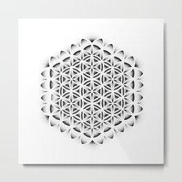 FRUiT OF LiFE Metal Print