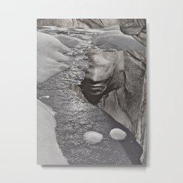 Natural Elements Metal Print