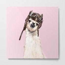 Cool Pilot Llama in Pink Metal Print