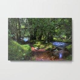 Quietly Flows The River Dart Metal Print