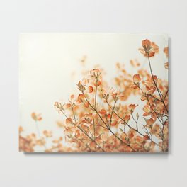 Orange Apricot Peach Coral Salmon Flower Photography, Floral Spring Tree Branches Metal Print