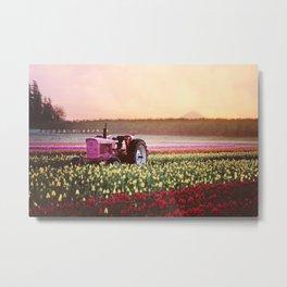 Tulip Festival Pink tractor Metal Print