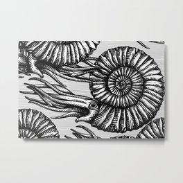 AMMONITE COLLECTION B&W Metal Print