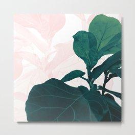 Blush Green Fiddle Leaf Dream #1 #tropical #decor #art #society6 Metal Print