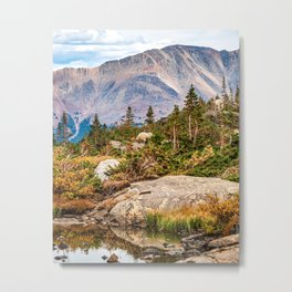 Pond on the Mountain // Beautiful Green Landscape of Trees and Mountains Metal Print