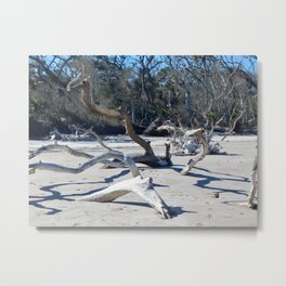 Driftwood and Shadows Metal Print