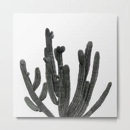 Black and White Cactus Metal Print