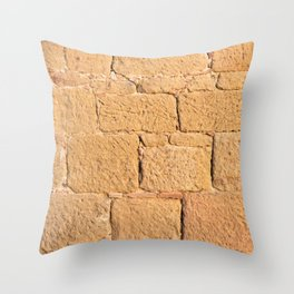 Close up view of an ancient smooth textured brick wall Throw Pillow