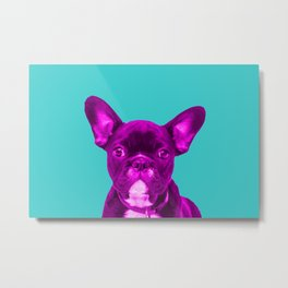 Pink Frenchie Bulldog on turquoise background Pop Art Metal Print