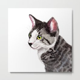 Ollie the Tabby Cat Metal Print