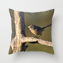 Wrentit in the Coastal Scrub by Reay of Light Throw Pillow