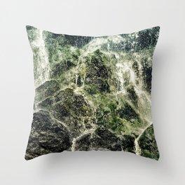 Fresh Water Throw Pillow