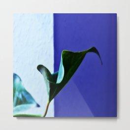 fat plant Metal Print