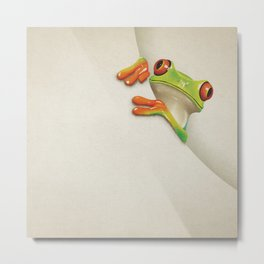 Little Red Eyed Tree Frog Metal Print