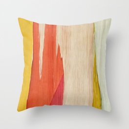 Color Story I Throw Pillow