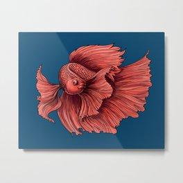 Coral Siamese fighting fish Metal Print