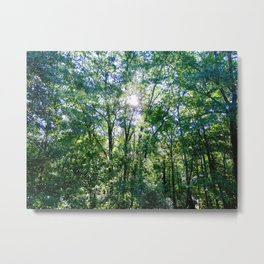 Blessed Forest Metal Print