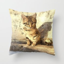 All Cats Are Black In The Dark Throw Pillow