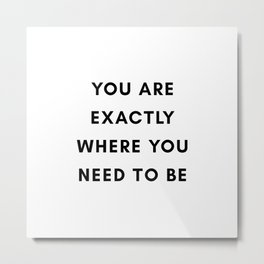 You are exactly where you need to be Metal Print