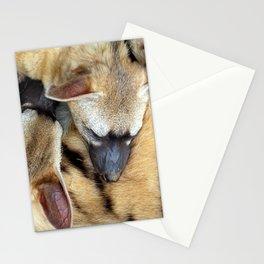 Three Sleeping Aardwolves Stationery Cards