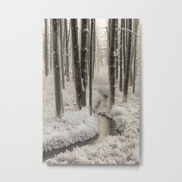 Frosty Morning in Yellowstone National Park Metal Print