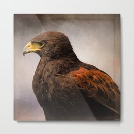 Meaningful - Wildlife Art Metal Print