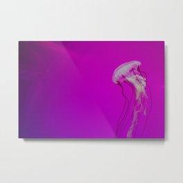 Jellies II Metal Print