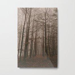 Autumn walk in the woods Metal Print