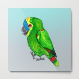 Turquoise-fronted amazon watercolor painting Metal Print