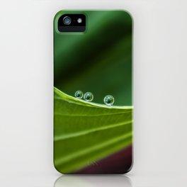 Three little drops iPhone Case