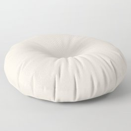 Sherwin Williams Trending Colors of 2019 Porcelain (Off White / Cream / Ivory) SW 0053 Solid Color Floor Pillow